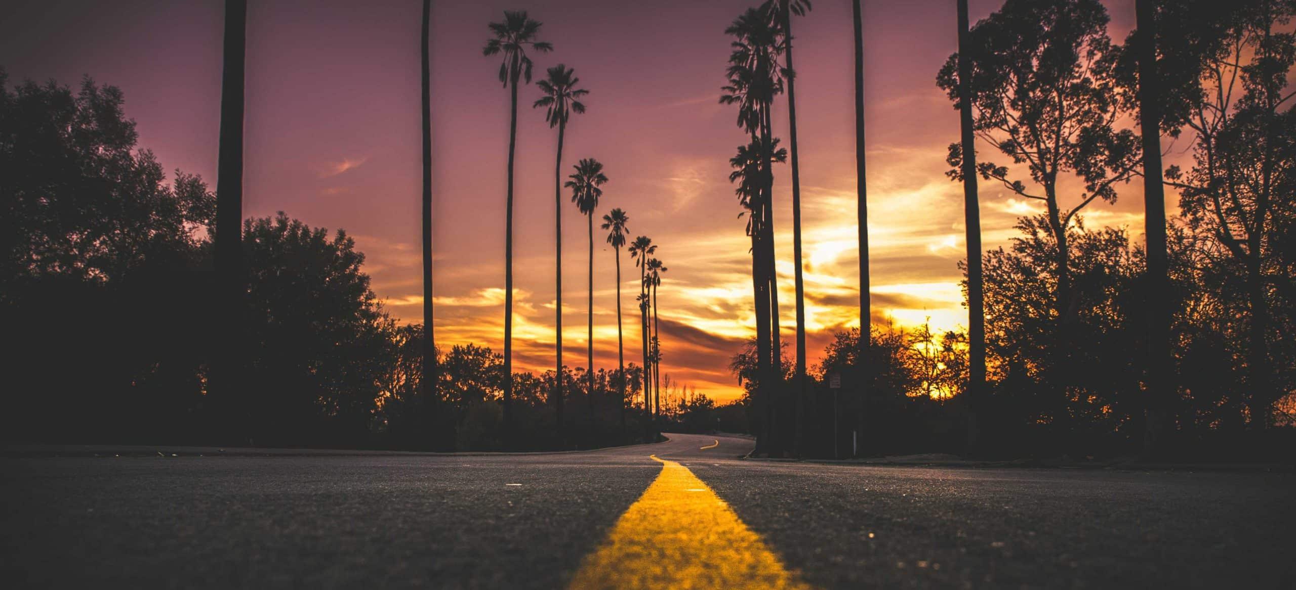 route Australie soleil palmiers